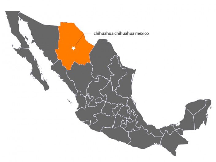 Chihuahua_Map